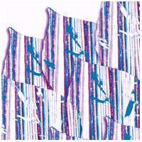 Intertextile Pavilion Shenzhen 2011 / Международная китайская выставка тканей, одежды и аксессуаров