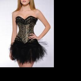 Supplier of women\'s clothing (corsets)